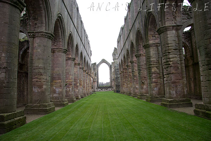 fountain_abbey_10