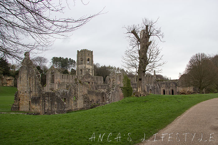 fountain_abbey_12