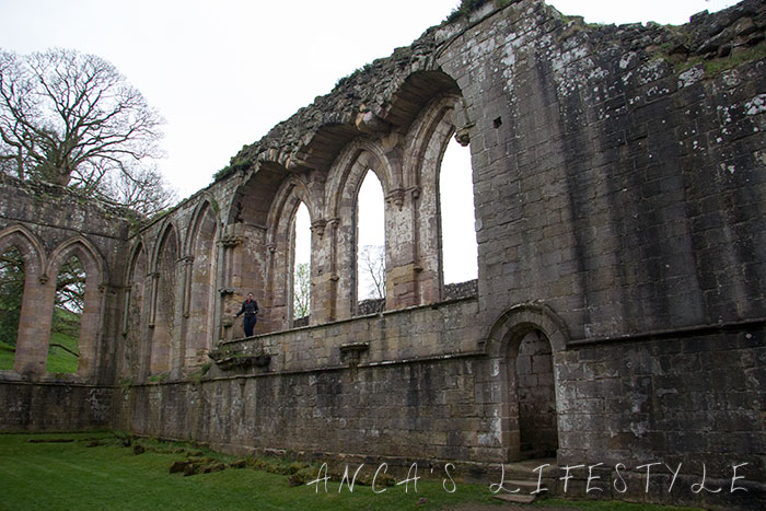 fountain_abbey_14