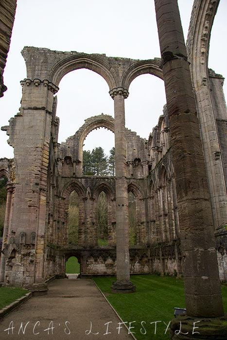 fountain_abbey_15
