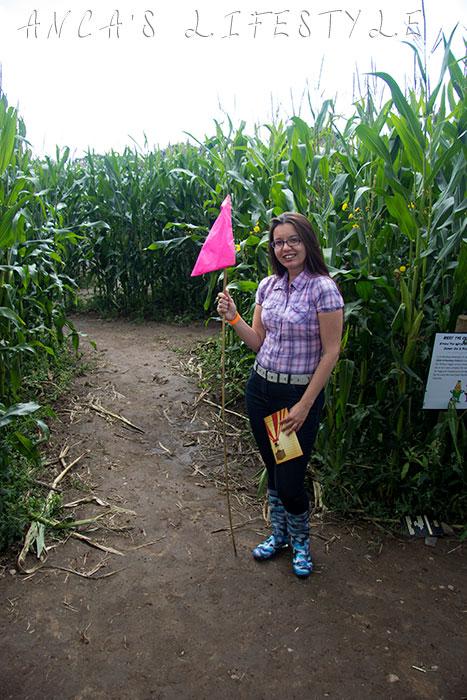 Brimstage maize maze 8