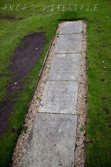 Dunham Massey park 3