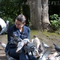 feeding pigeons 16