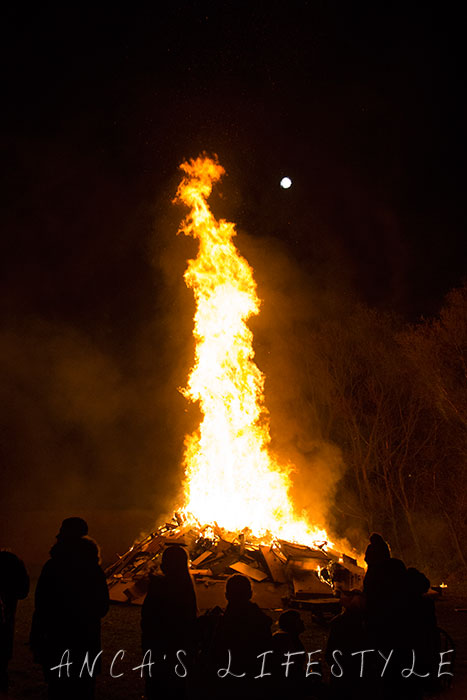 bonfire night 2014 02