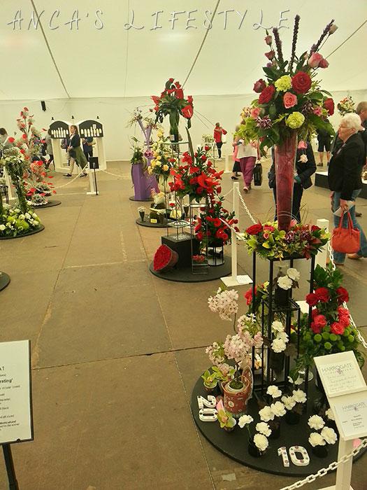14 harrogate flower show 2015
