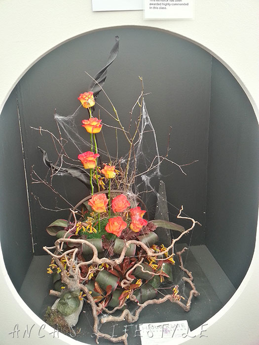15 harrogate flower show 2015