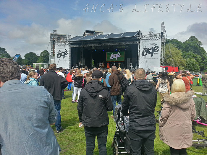 06 Africa Oye Liverpool festival 2015
