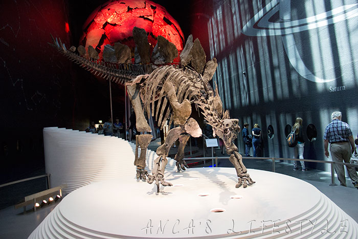 01 Natural History Museum London