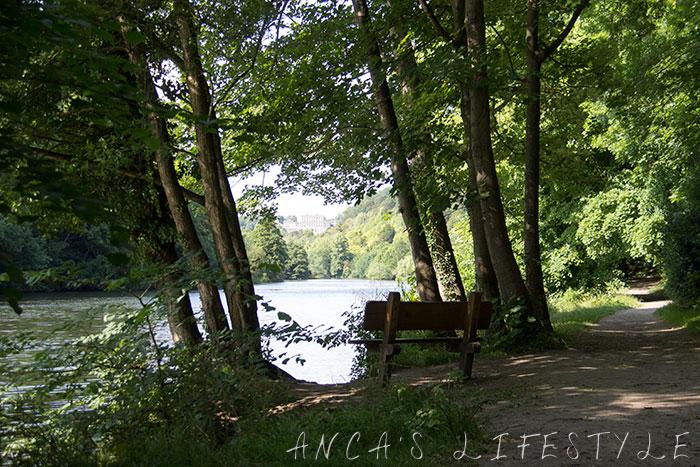 02 Cliveden woods