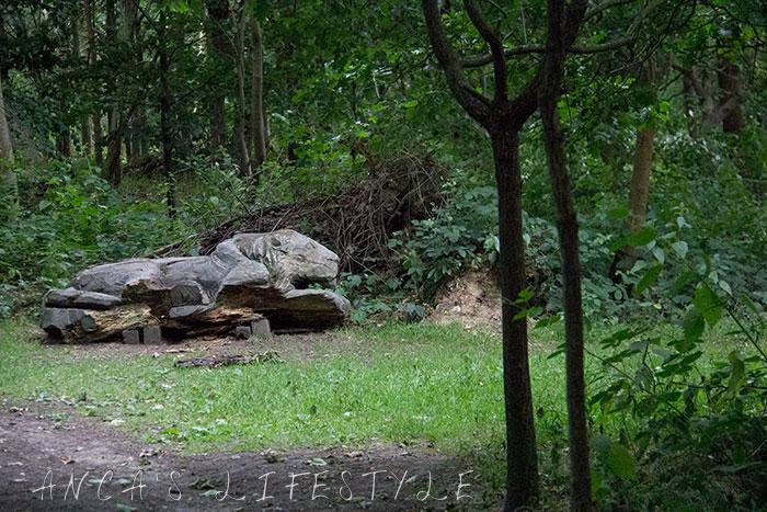 07 Cliveden woods