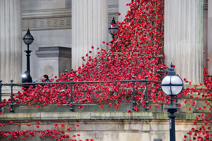 01 Weeping window