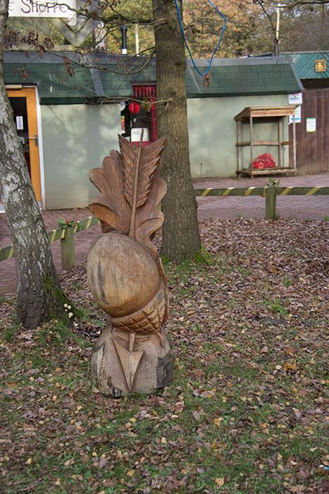 08 Sherwood forest
