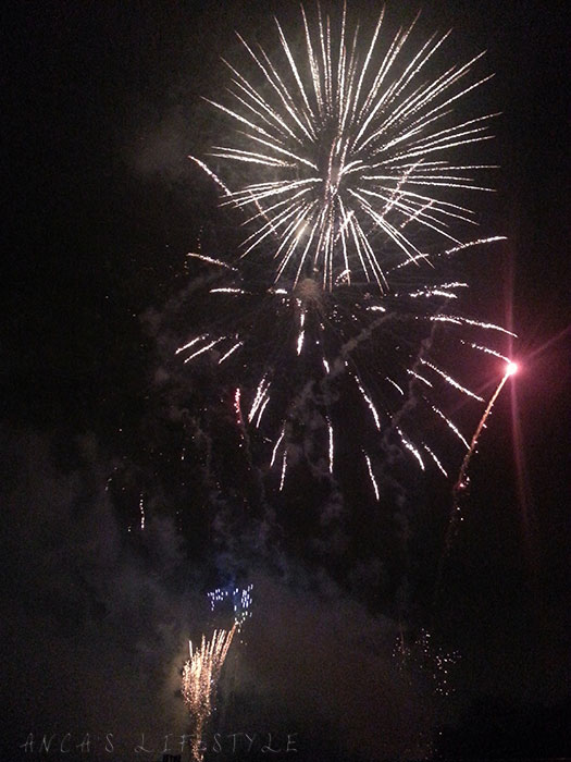 11 Bonfire night in Sefton Park Liverpool
