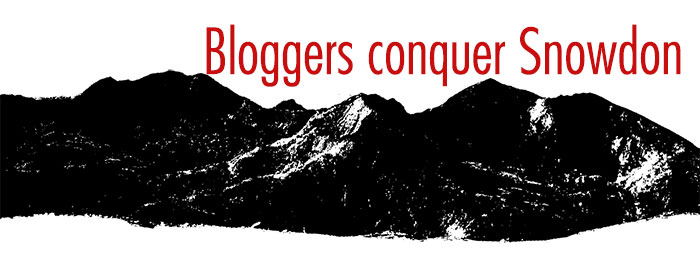 Bloggers conquer Snowdon