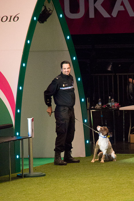 West-Midlands-Police-Crufts-01