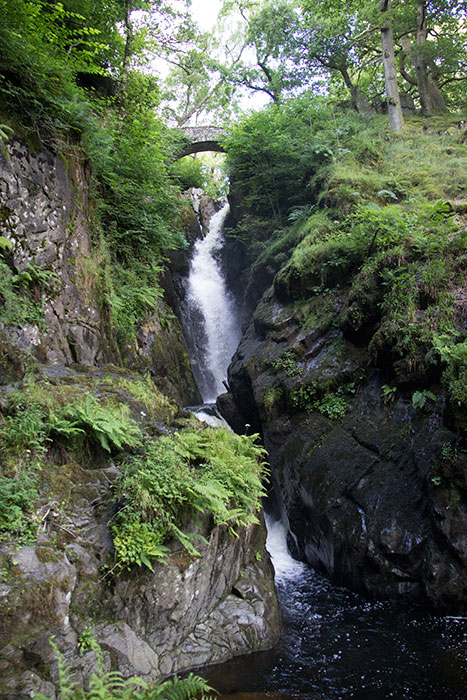 01 Aira Force