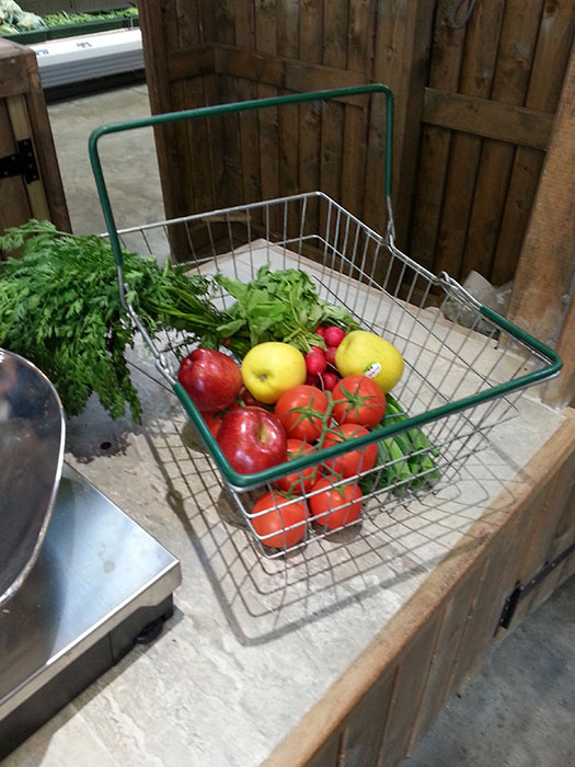 10-kelsey-farm-shop