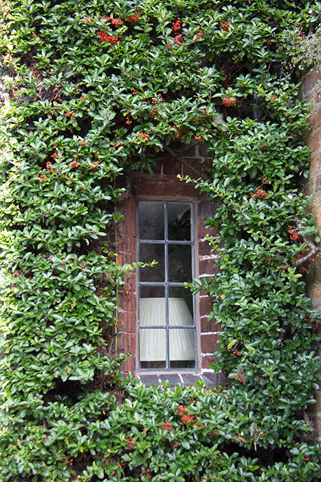 05 Window