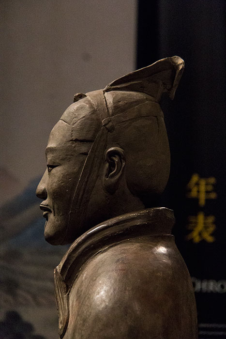 The Terracotta Warriors Head Details