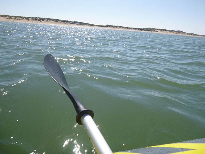 Kayaking. The view towards the shore