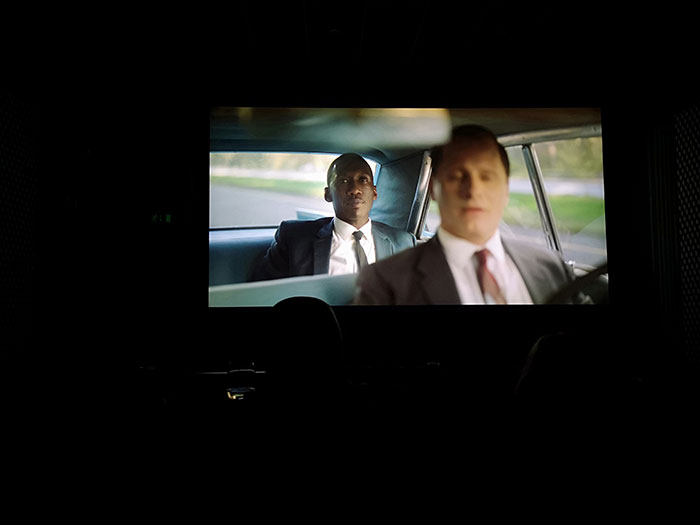 Preview of Green Book