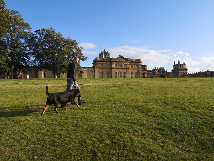 Festus and my husband going towards Blenheim Palace