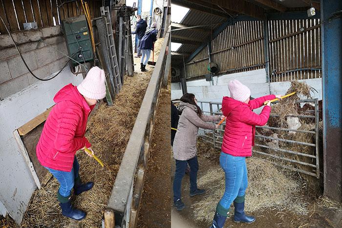 Farmer experience - 1