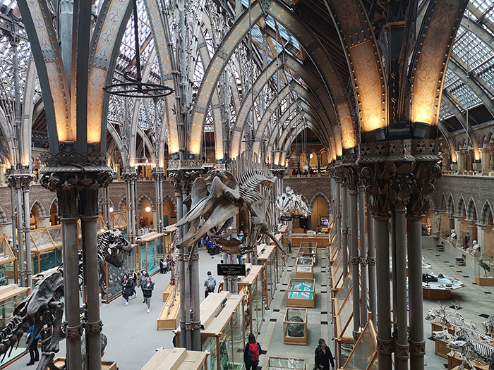 Museum of Natural History, from above