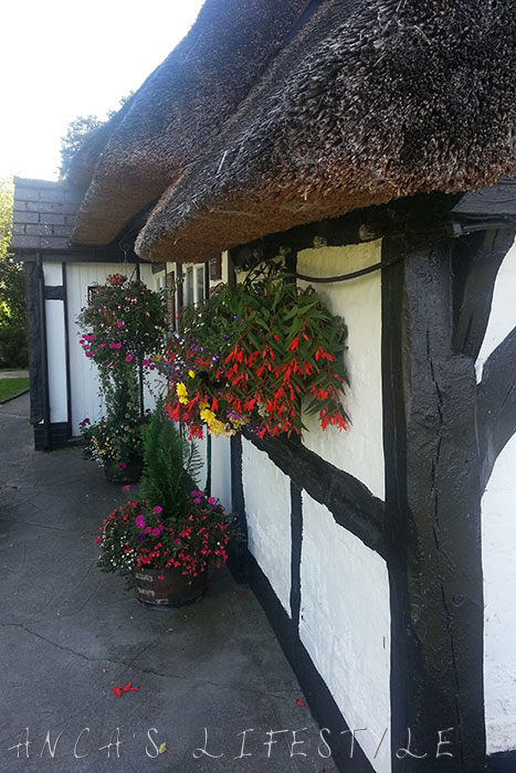 The thatch Nantwich 3