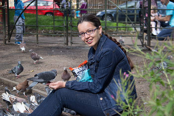 feeding pigeons 09