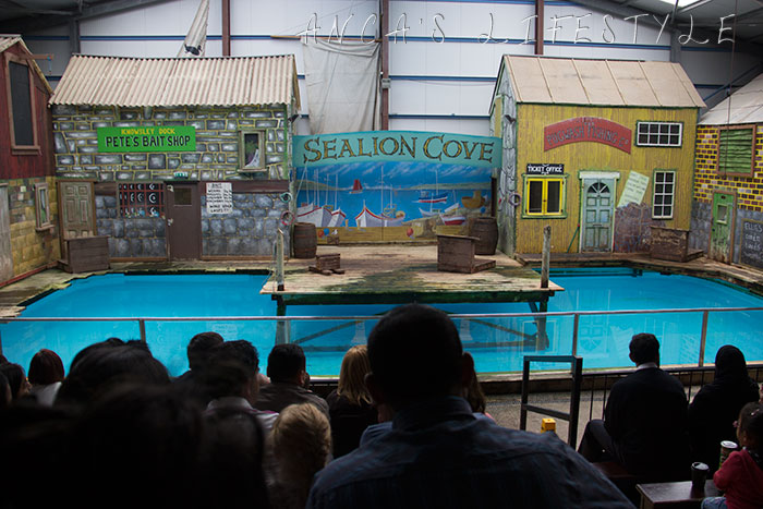 safari park uk 04