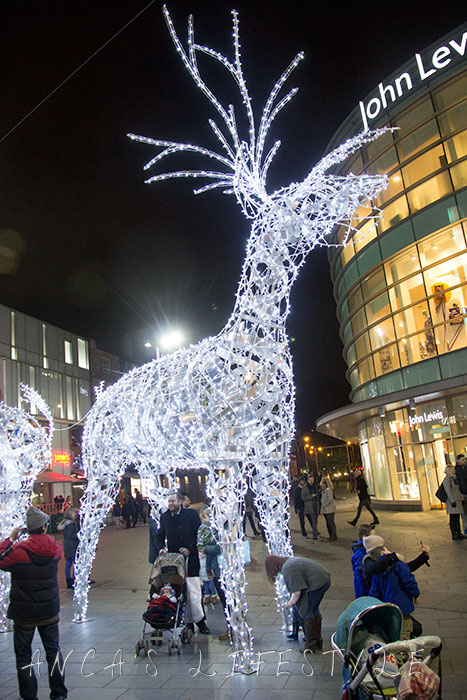 Christmas Launch and Lantern Parade 11