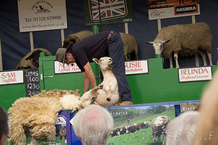 05 Cheshire county show