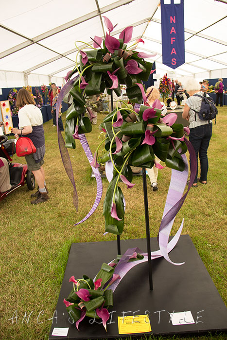 12 Cheshire County Show
