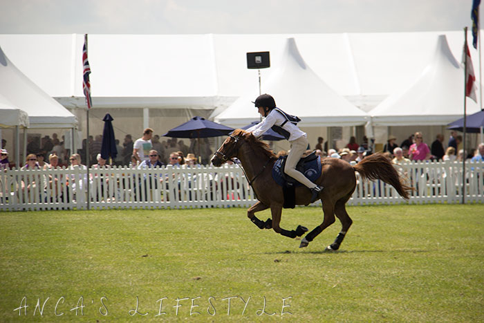 19 Cheshire County Show