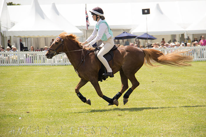 20 Cheshire County Show