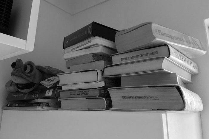Borrowing or Buying Books