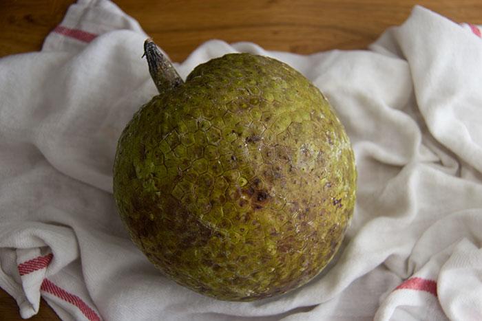 Breadfruit. How it looks like