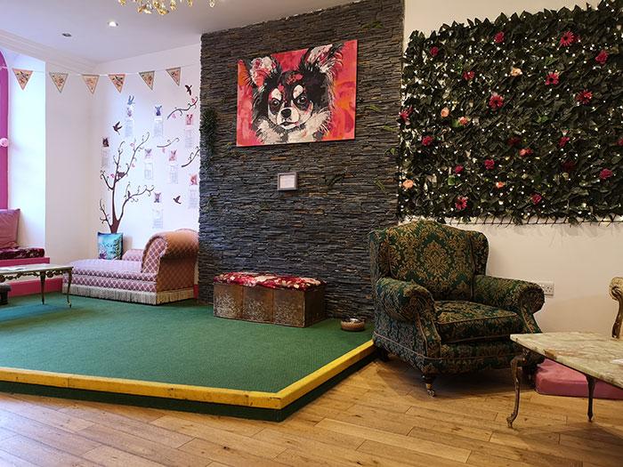 Edinburgh Chihuahua Cafe - Interior