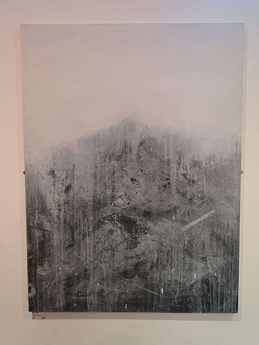 Liverpool Art Fair at Metquarter. Artwork