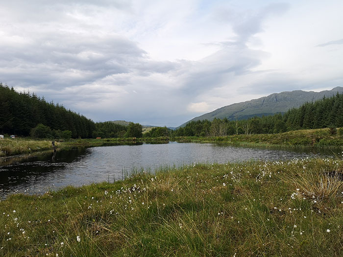 Lake at Highland Titles Nature Reserve