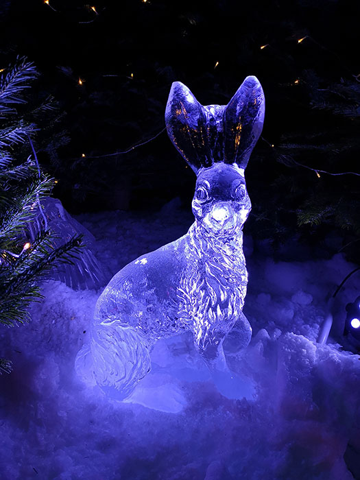 Bunny at Ice Cavern, Manchester