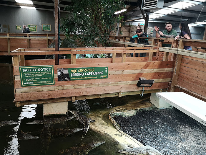 Health and safety before doing the Crocodiles Feeding experience at Crocodiles of the World