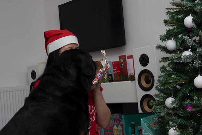 Festus, impatient for his gifts