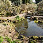 Arley Gardens