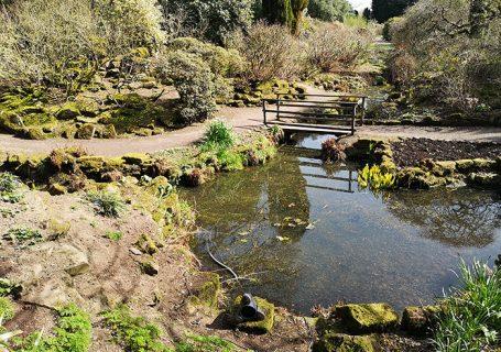 Lake at Arley Gardens
