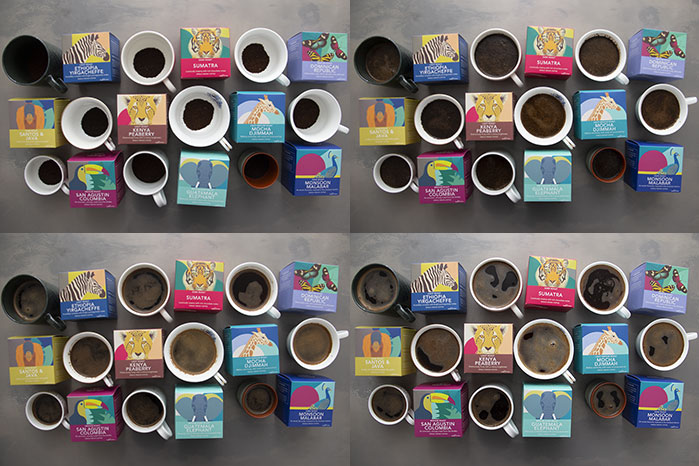 Coffees of the World Gift Set. Tasting session