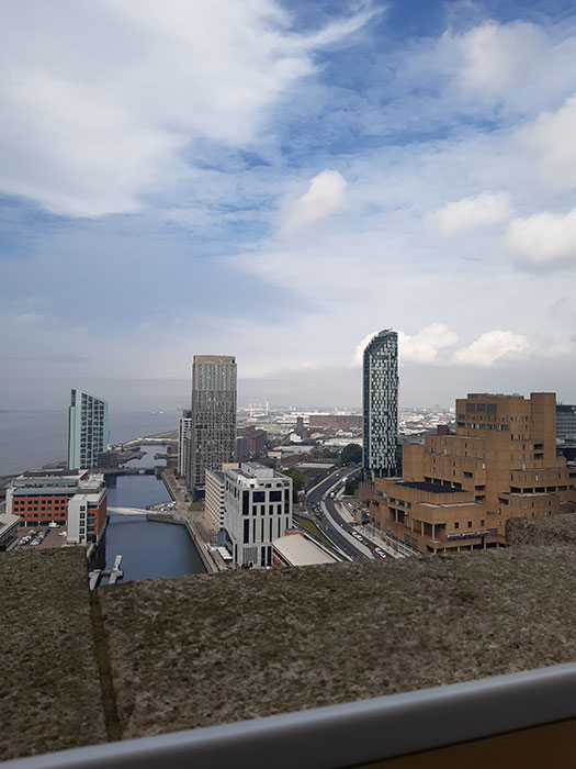 Liverpool docks from above