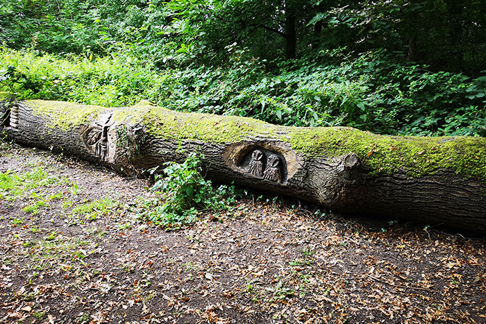 tree trunk as a bench